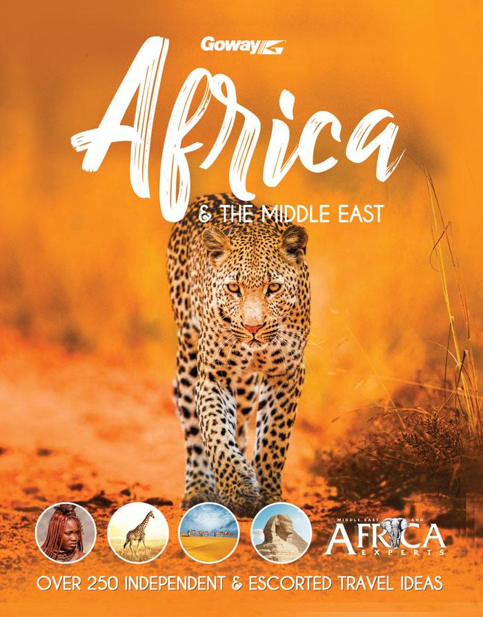 brochure-africa