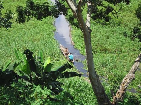 Exploring the Brazilian Amazon by canoe