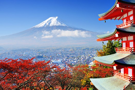 Fall Colours with Mount Fuji Background, Japan