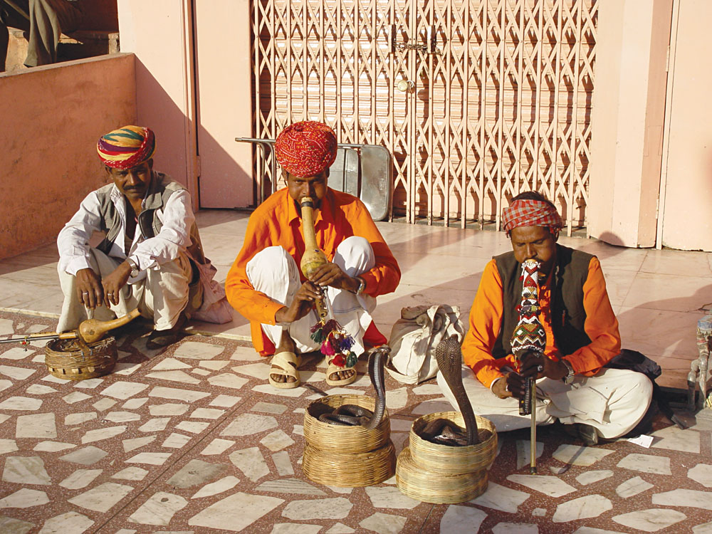 Snake Charmers in India