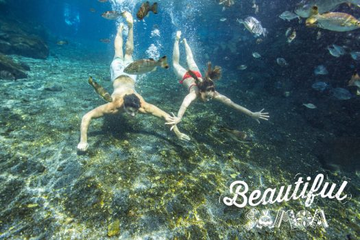 Explore Samoa's cave pools with Samoa Logo