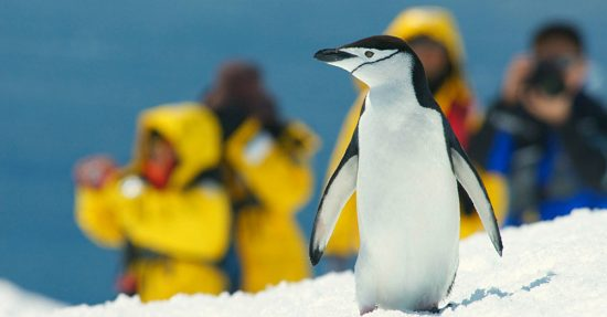 Photo Opportunities Abound in Antarctica