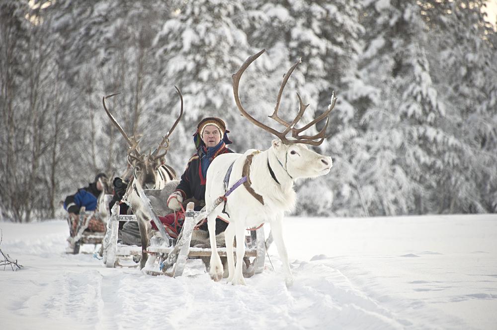 Kakslauttanen Arctic Resort - Reindeer Safari, Finnish Lapland, Finland