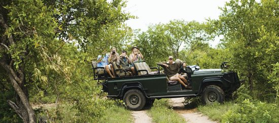 Leopard Crossing Road with Tourists in Jeep, Kruger National Park, South Africa