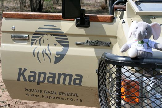 Kirsty Perring - Kapama Private Game Reserve - Goway Mascot Thandi at Kapama, South Africa