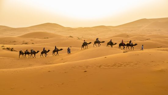Sand Dunes and Group Camel Ride Near Merzouga, Morocco