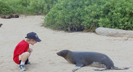 Face time with the locals - The Galapagos